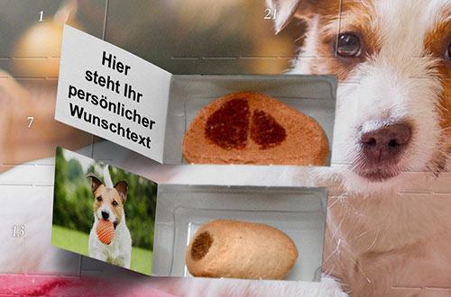 Weihnachtskalender Für Hunde.Hunde Adventskalender Www Adventskalender De