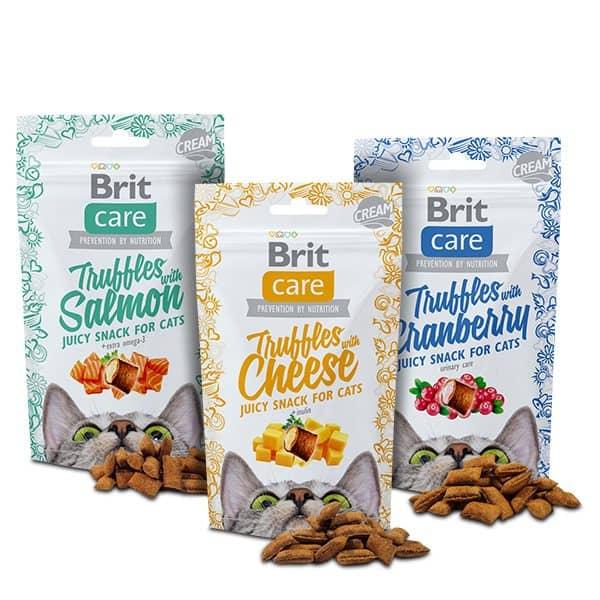 BritCare Katzensnacks im Adventskalender