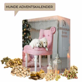 Boxiland Hunde-Adventskalender 2018